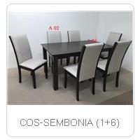 COS-SEMBONIA (1+6)